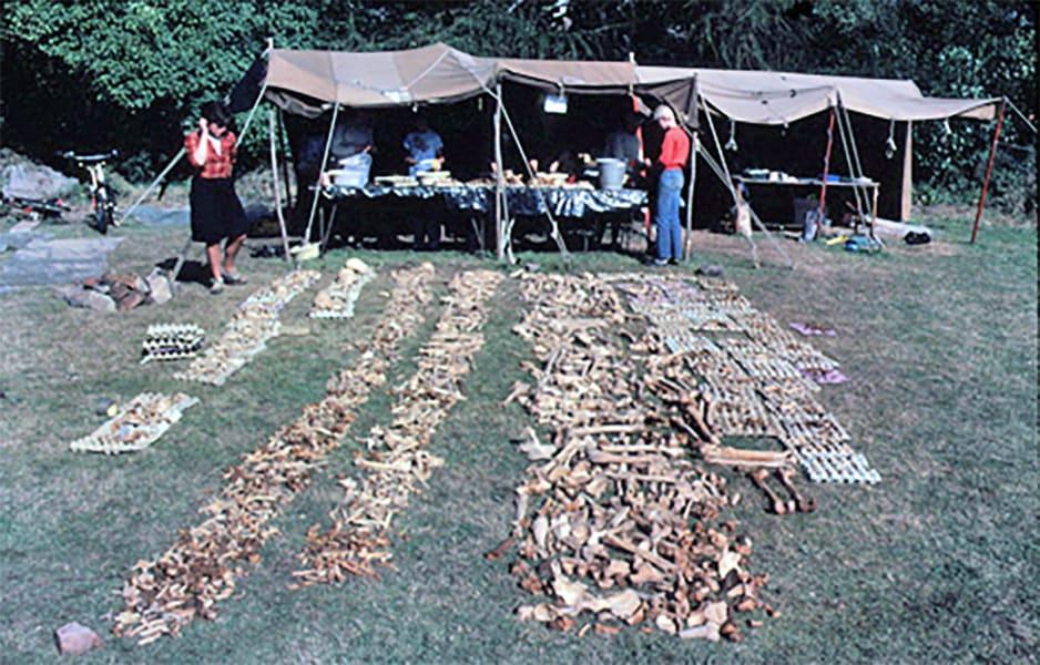01 repton viking burial site