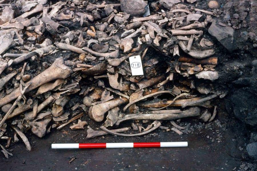 05 repton viking burial site
