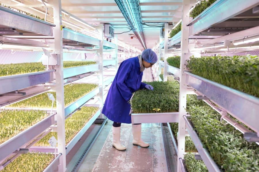05 urban farms