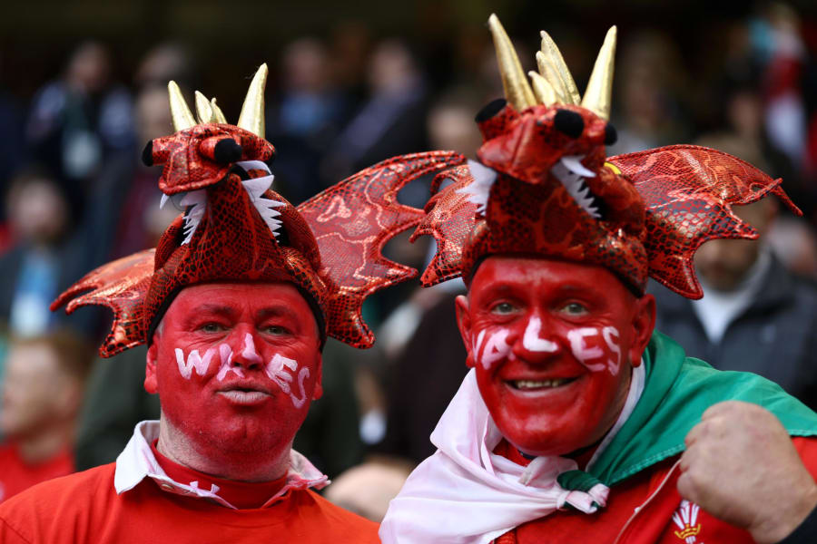 Six Natiosn Wales fans