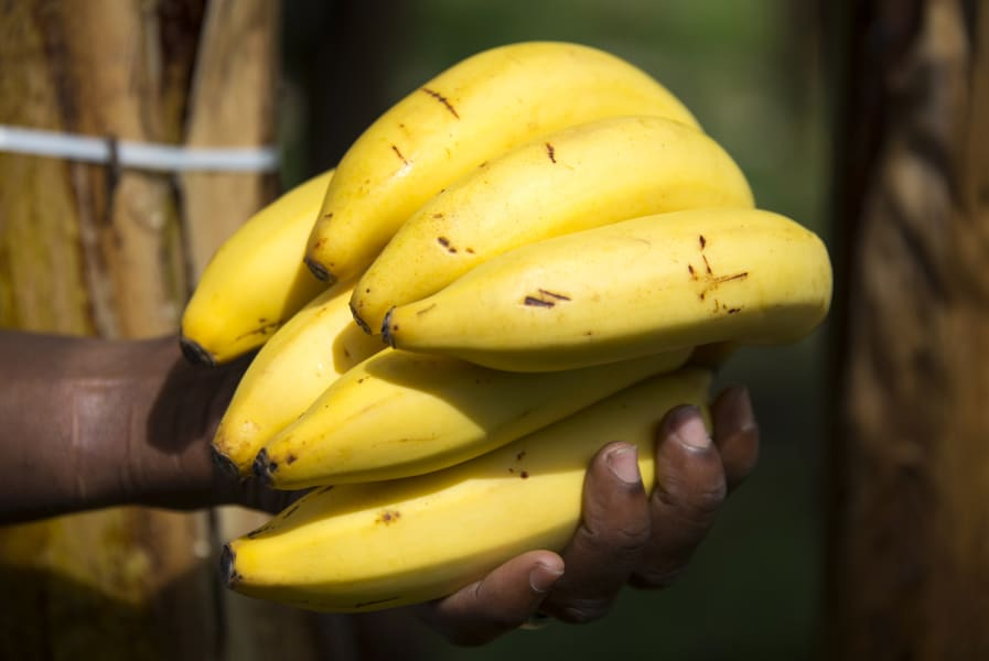 water foods 10 bananas