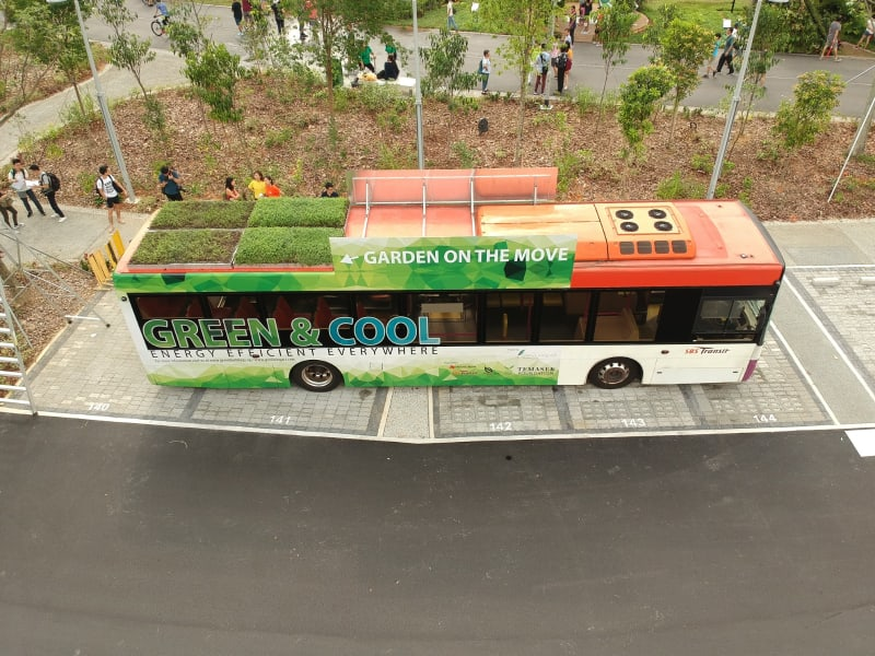 bus green roof 7
