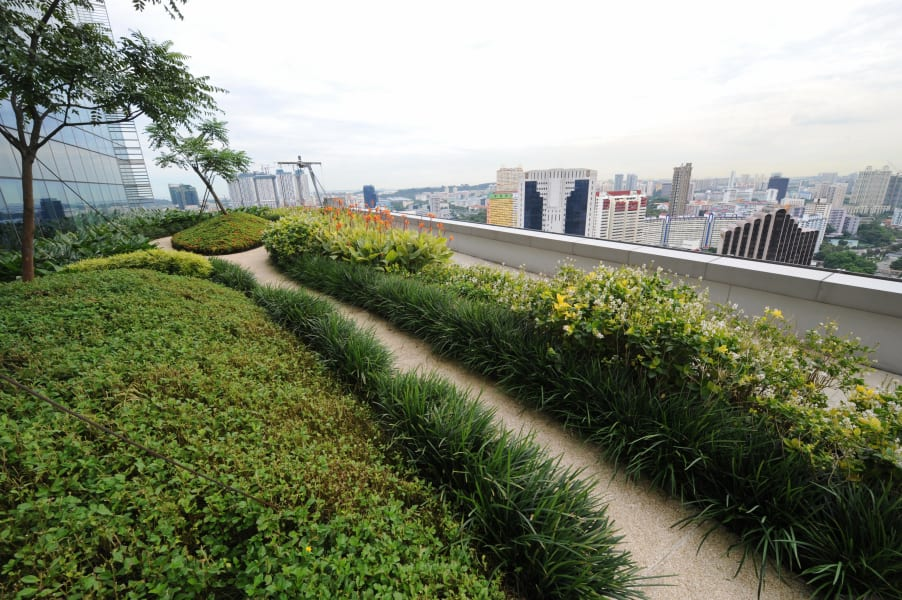 singapore green roof