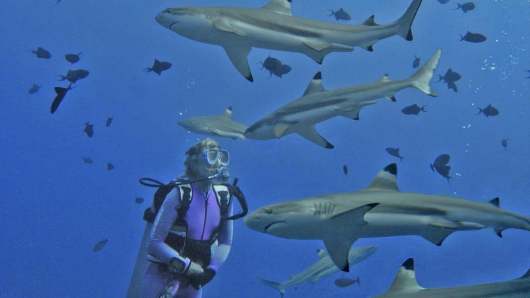 valerie taylor shark girl 10 cropped