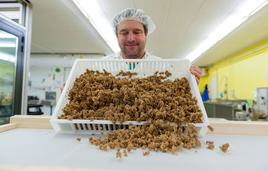 21 eating insects