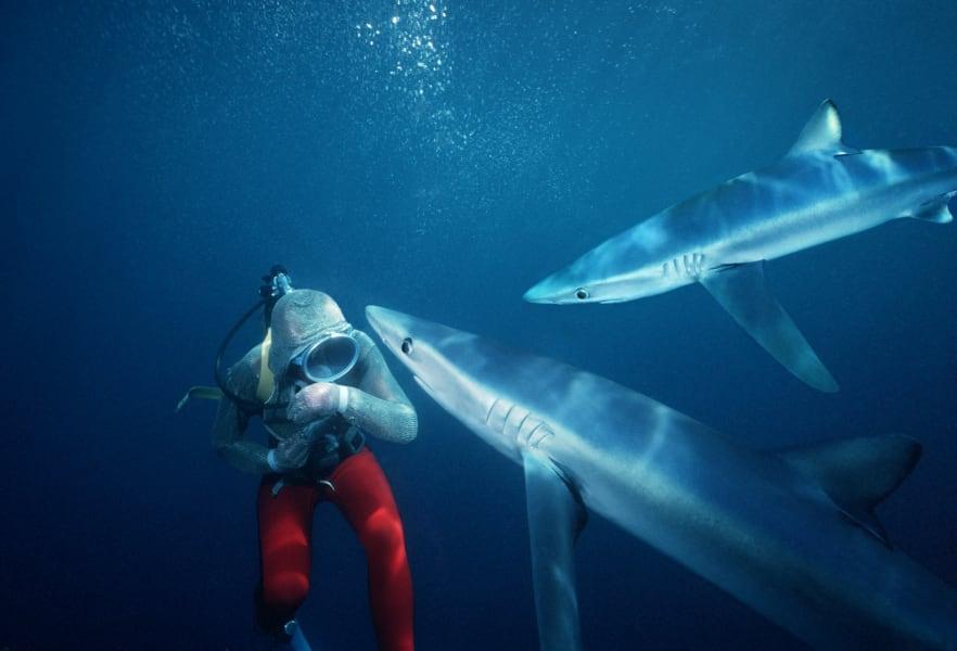 Valerie Taylor shark gal