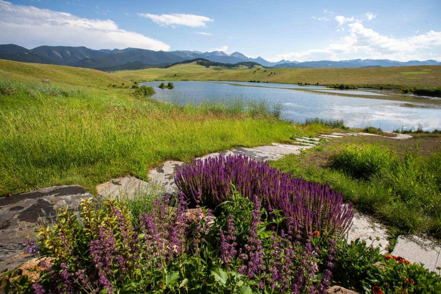 ted turner montana purple flower and lake