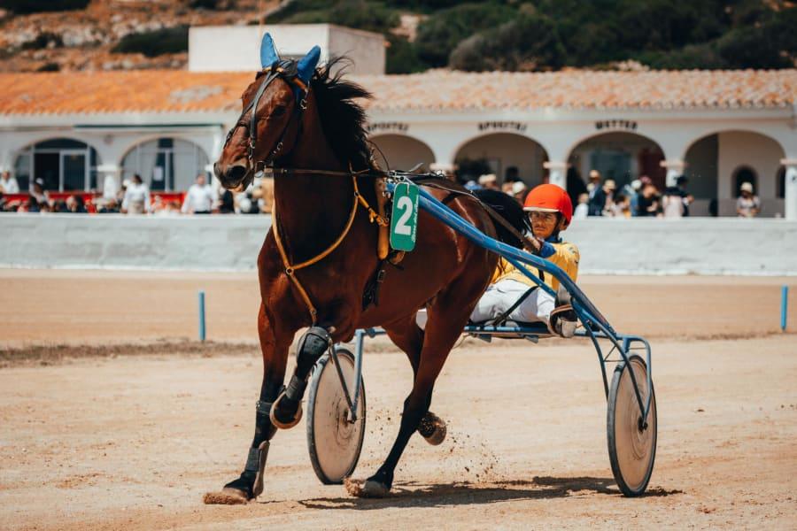 spanish royal ascot trotting racer