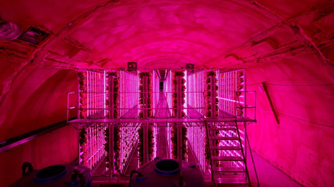 vertical tunnel farming south korea 1