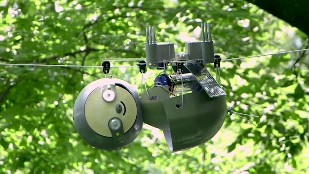 Slothbot robot actua como si fuera perezoso vida silvestre
