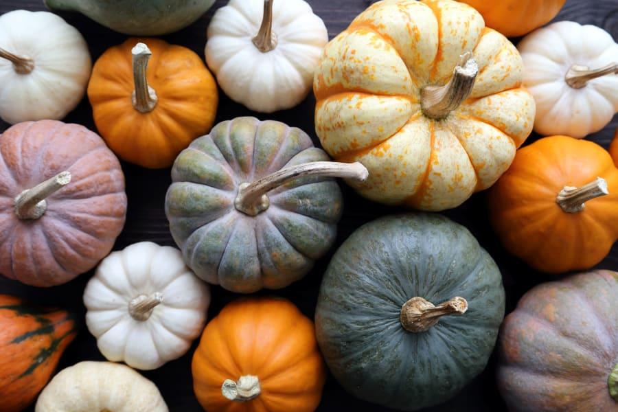02 real pumpkin spice foods