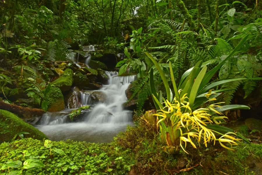 Bolivia zongo waterfall
