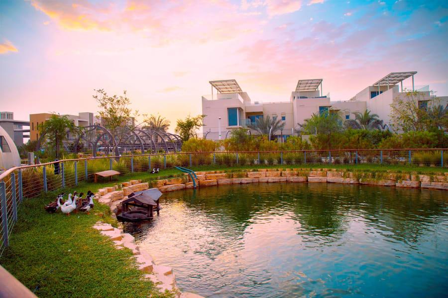 Dubai Sustainable City water ducks