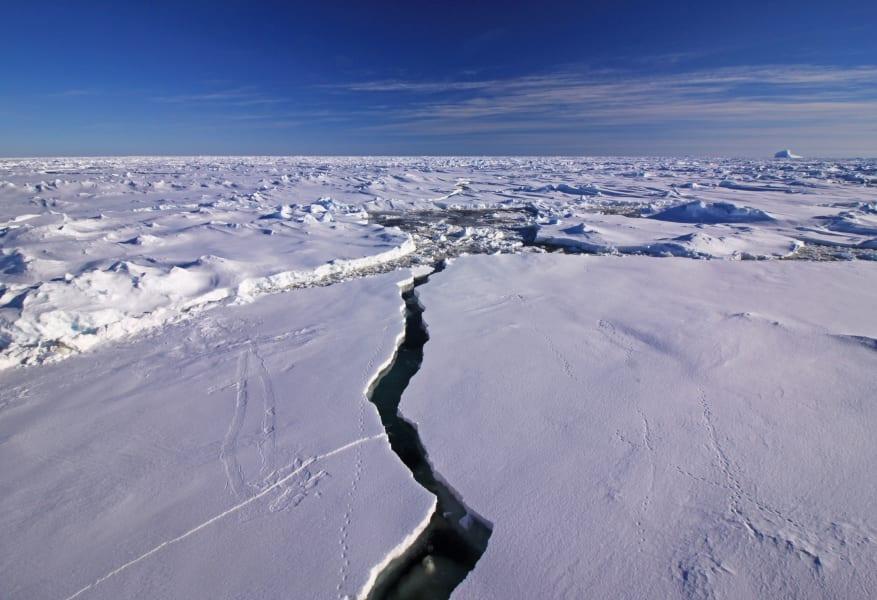 04a seals scientists antarctica c2e