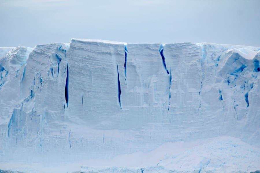 06a seals scientists antarctica c2e
