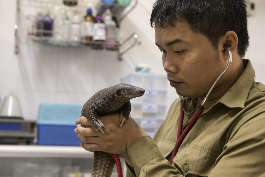 RESTRICTED 01 save vietnams wildlife