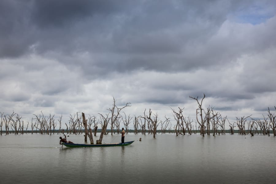 RESTRICTED ghana lake volta kristine trees