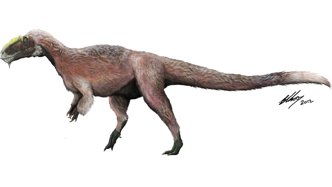 Biggest dinosaur myths and mysteries