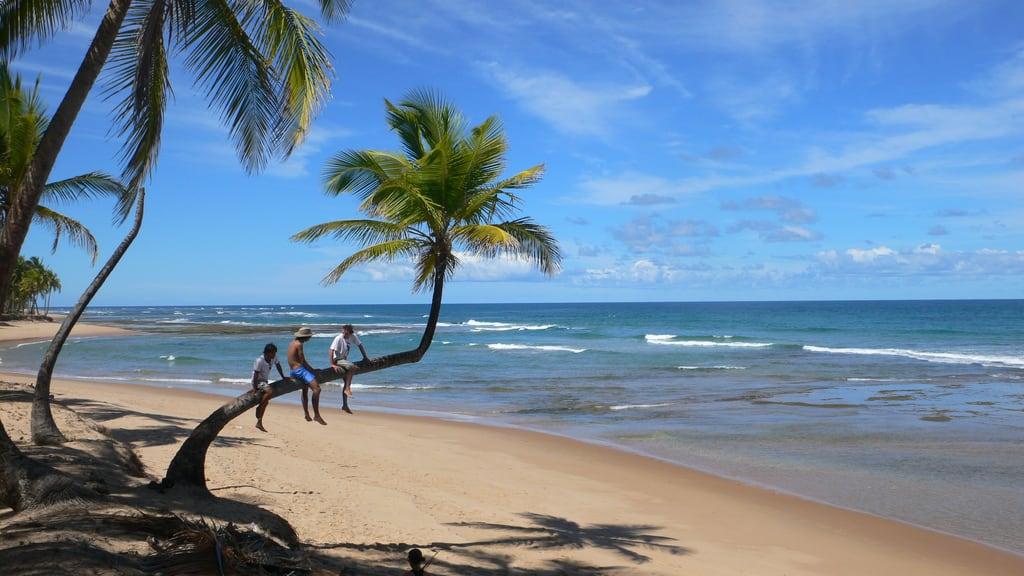 Brazil Beaches Taipus De Fora