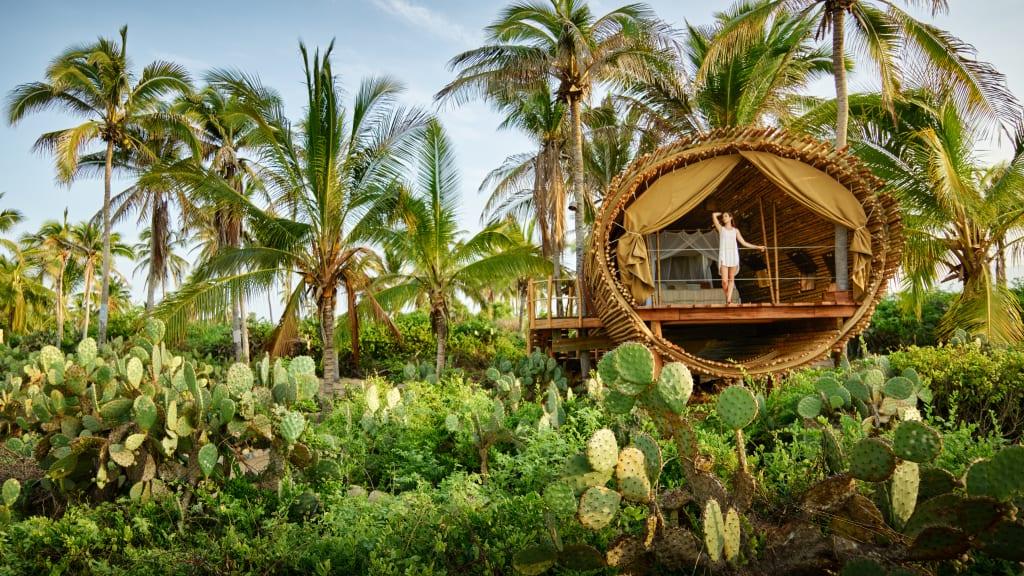 luxurious tree house. tree suite playa viva luxurious house