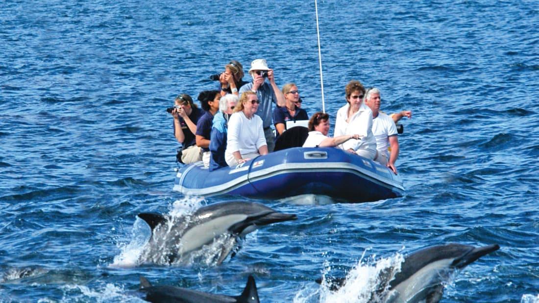 adventure cruise 9.Hawaii