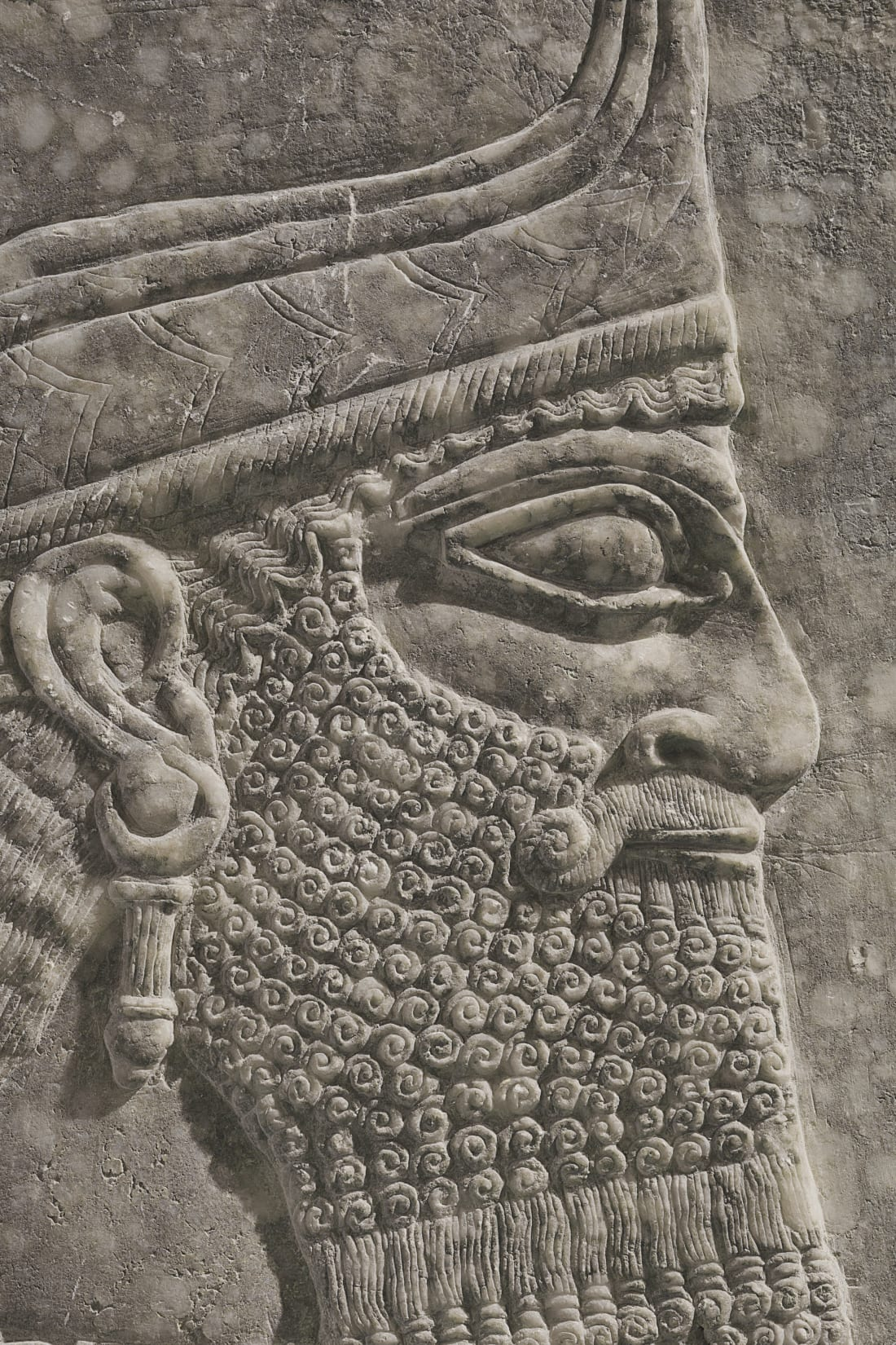 Assyrian relief panel_4