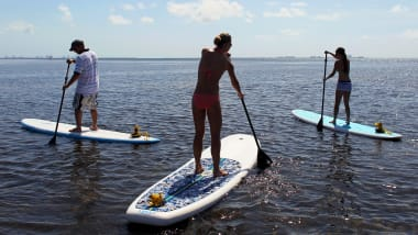 Stand Up Paddle Boarders Off Miami Beach