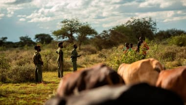 Wildlife rangers keep their distance from local herders while interviewing them for information.