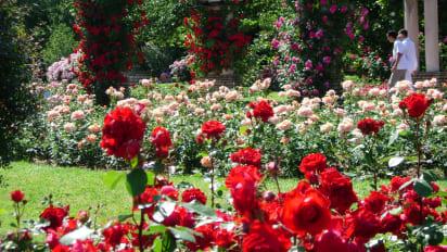 What A Wonderful World 13 Fabulous Gardens Cnn Travel