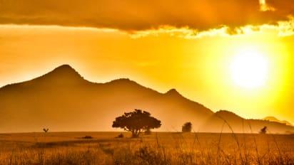 African safari: 8 best national parks to view wildlife   CNN Travel
