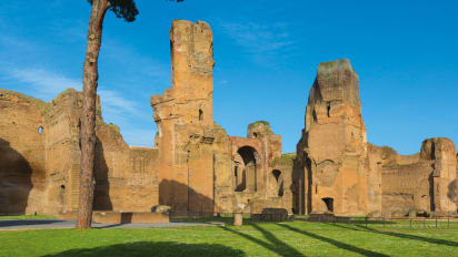 McDonald's bid to build near Baths of Caracalla in Rome is