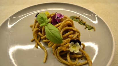 The Insect Experience in Cape Town makes bug-based dishes