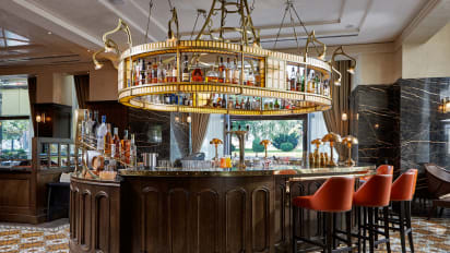 Luxury Bars In Budapest The Finest Places To Go Cnn Travel,Tomato Blight