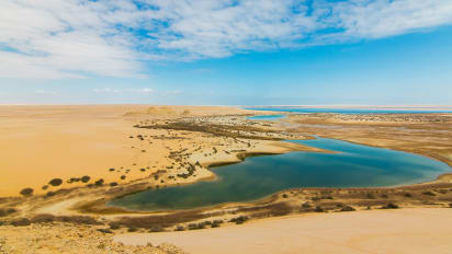 Fayoum Oasis Egypt S Best Kept Secret Cnn Travel Oasis