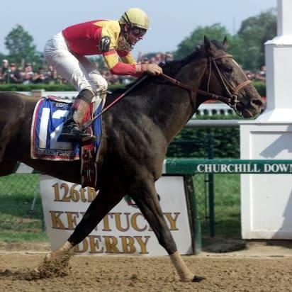 Kết quả hình ảnh cho The story of million dollar horses