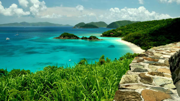 Trunk Bay St John U S Virgin Islands