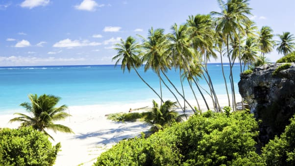 Why do people come to Barbados? For starters, places such as Bottom Bay.