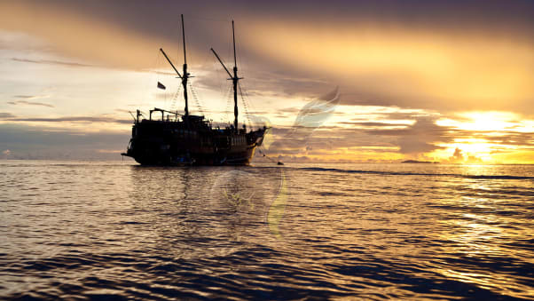 Luxury liveaboard dive boats: 5 of the world\'s best | CNN Travel