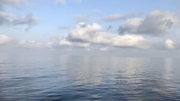 Calm sea in the Indian Ocean