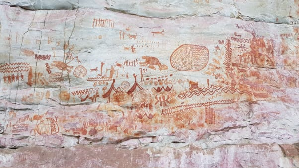 The rock art, dating back some 12,500 years, is in a remote area of Colombia.