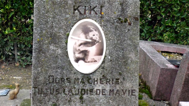Kiki the Monkey's grave, Cimitiere des Chiens