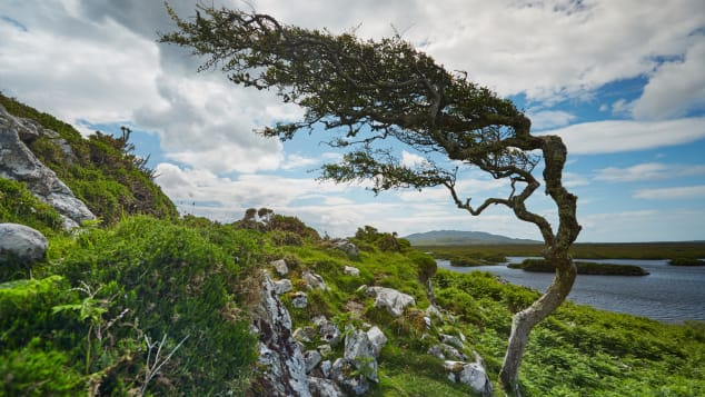 Connemara-Galway