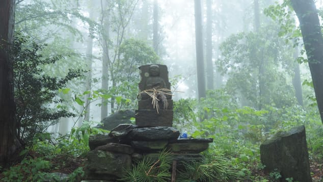 A hike along the Kumano Kodo trail is a Wakayama highlight.