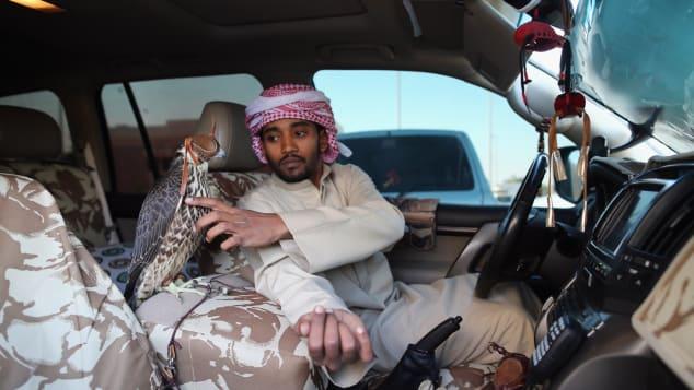 Falcons Abu Dhabi UAE 1