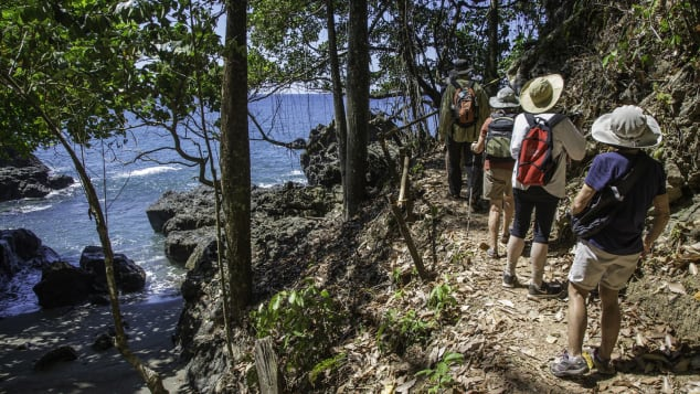 UnCruise excursions include a guided beachfront hike in Costa Rica.