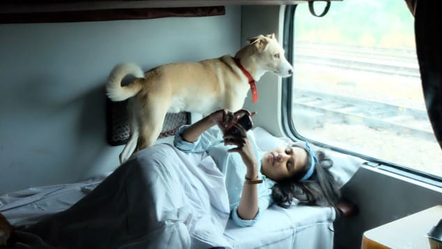 Travel with dogs India