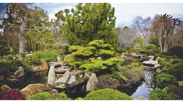 """Green Escapes"" showcases urban gardens around the world. Pictured here: Himeji Garden, Adelaide, Australia."