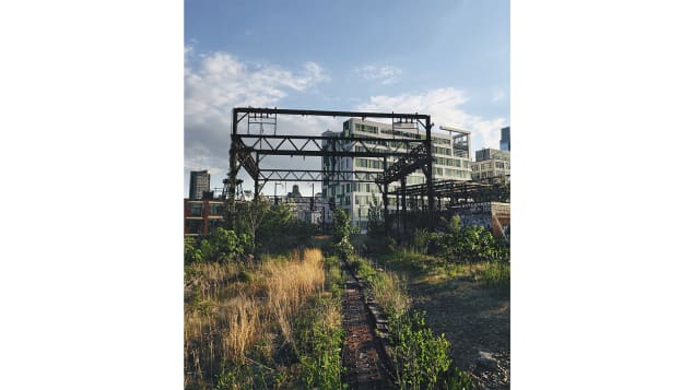 It's become more common to repurpose derelict land into green space. Pictured here: The Rail Park, Philadelphia, Pennsylvania.