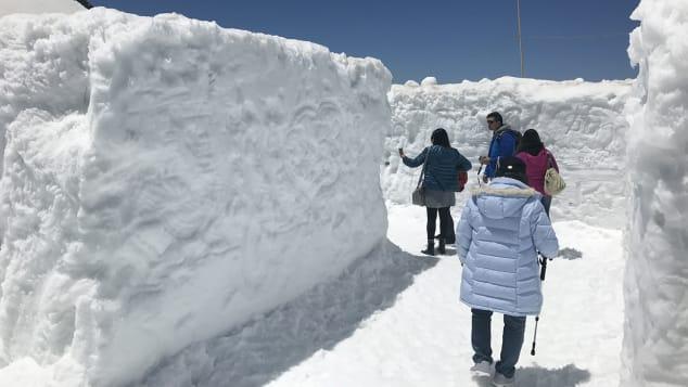 Tateyama Kurobe Alpone Route 雪の迷路②(2018.A-2-12)