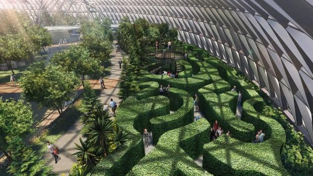Singapore Changi Jewel Canopy Mazes - hedge maze